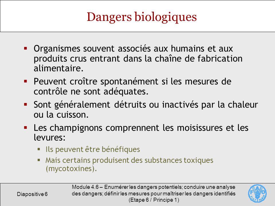 Dangers biologiques Organismes souvent associés aux humains et aux produits crus entrant dans la chaîne de fabrication alimentaire.