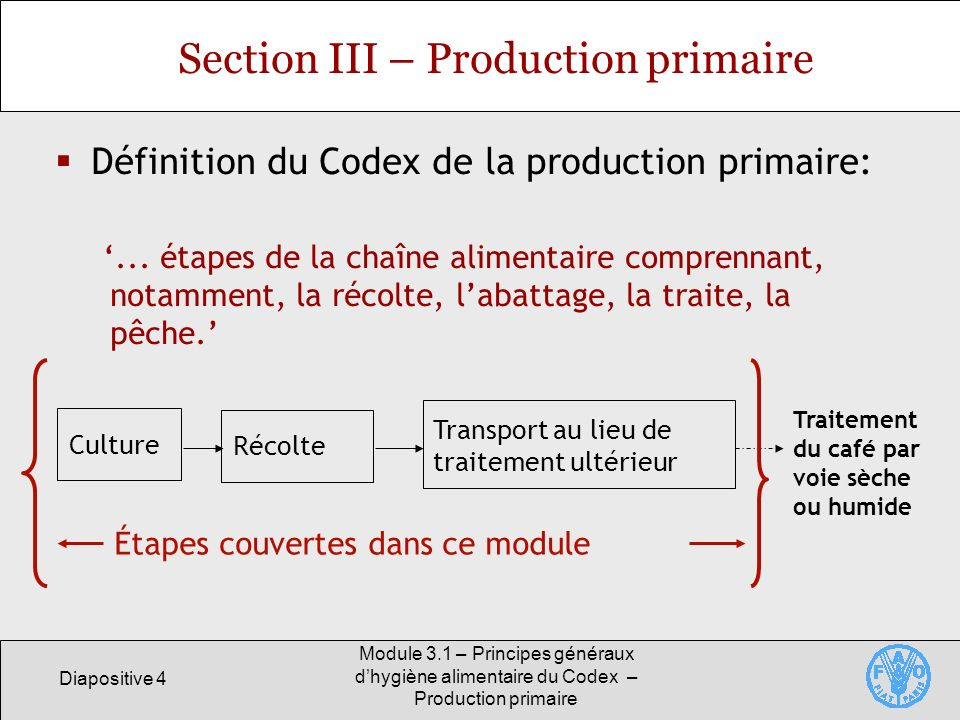 Section III – Production primaire