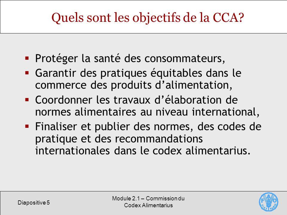 Quels sont les objectifs de la CCA