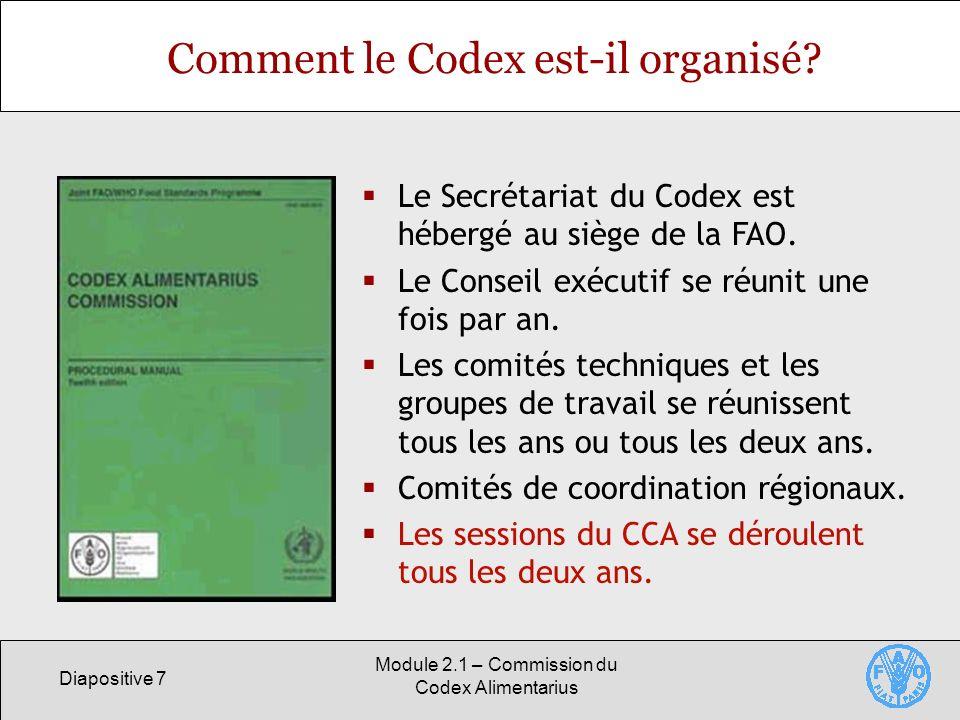 Comment le Codex est-il organisé