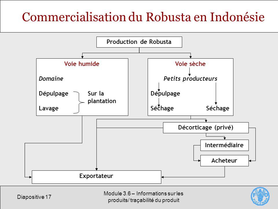Commercialisation du Robusta en Indonésie