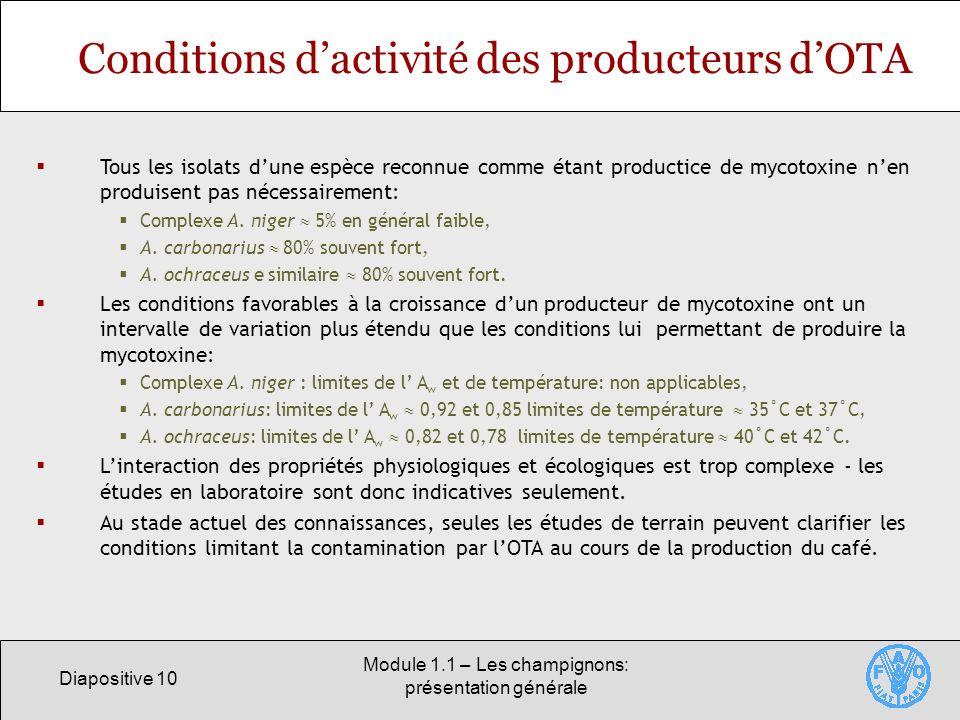 Conditions d'activité des producteurs d'OTA