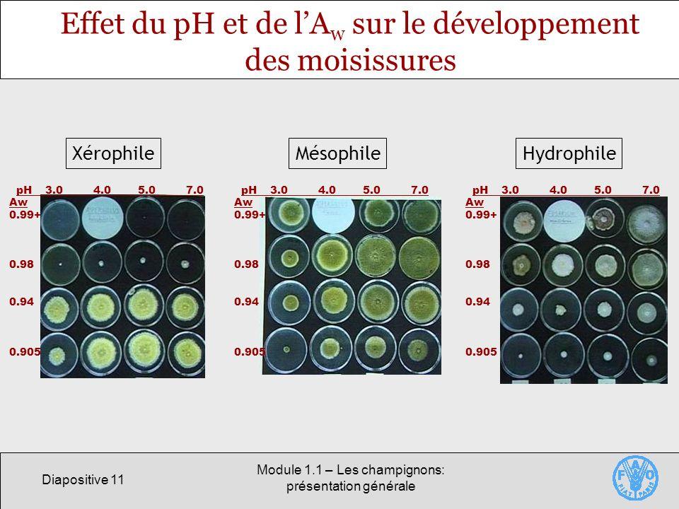 Effet du pH et de l'Aw sur le développement des moisissures