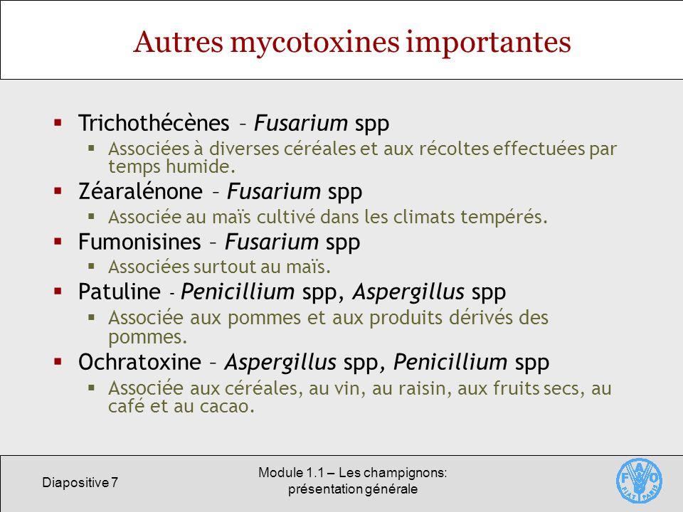 Autres mycotoxines importantes