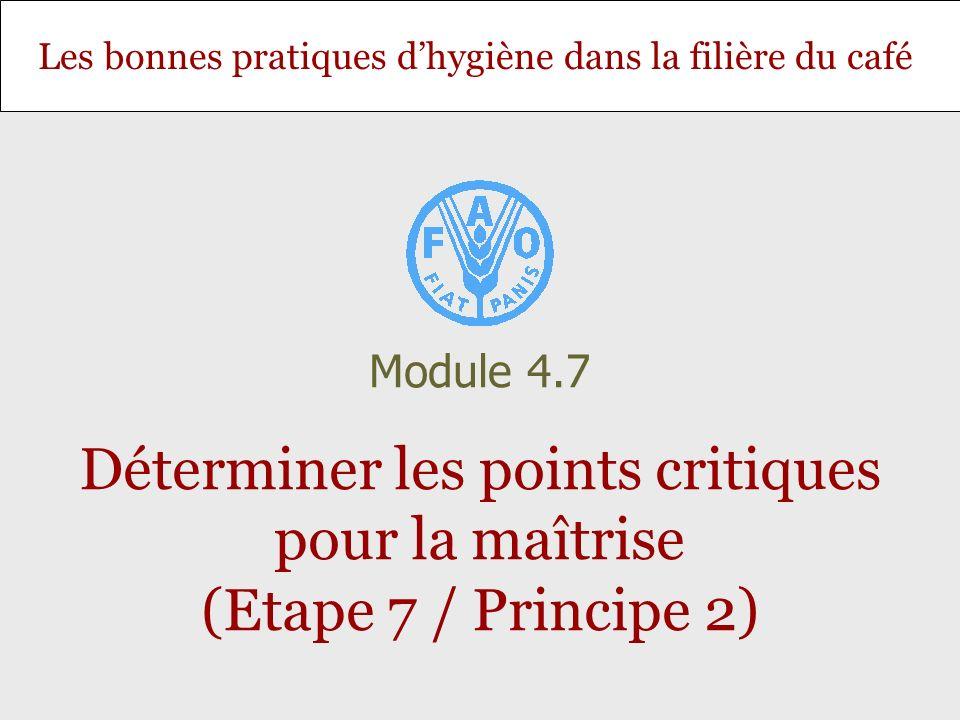 Module 4.7 Déterminer les points critiques pour la maîtrise (Etape 7 / Principe 2)