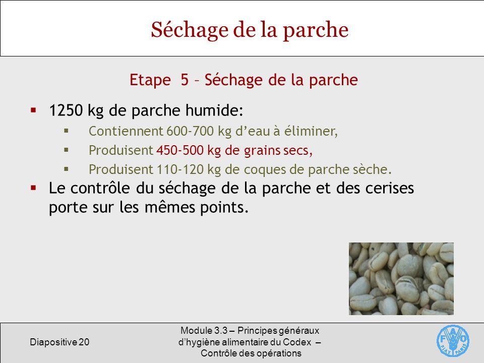 Etape 5 – Séchage de la parche