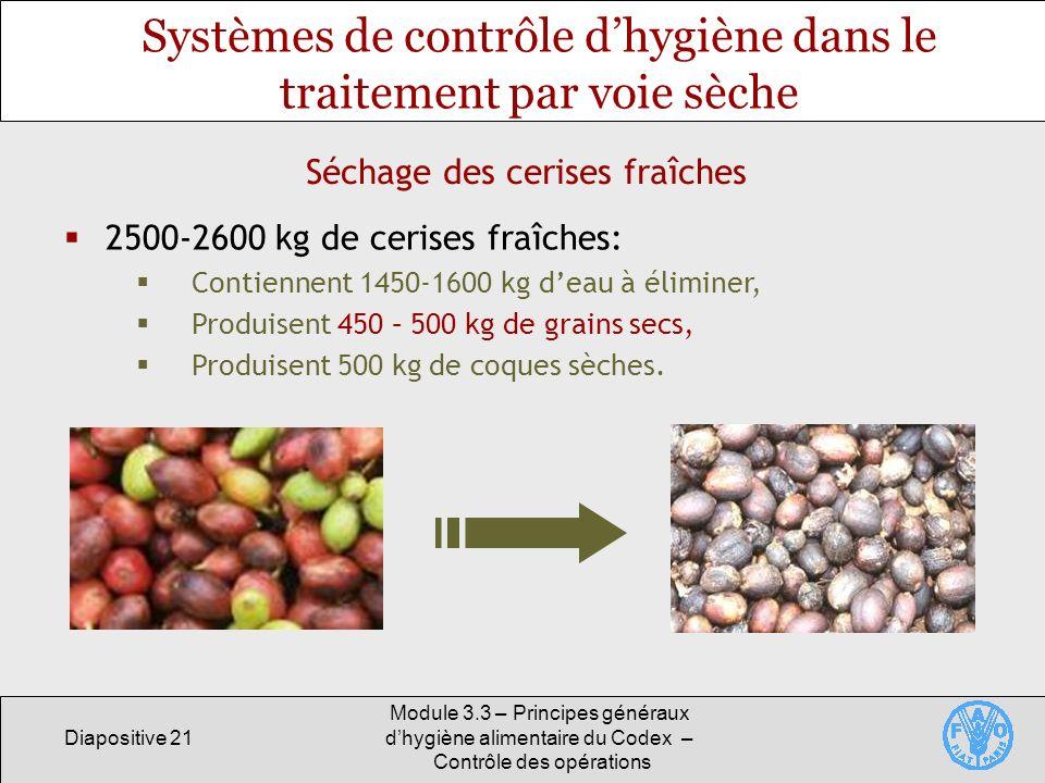 Systèmes de contrôle d'hygiène dans le traitement par voie sèche