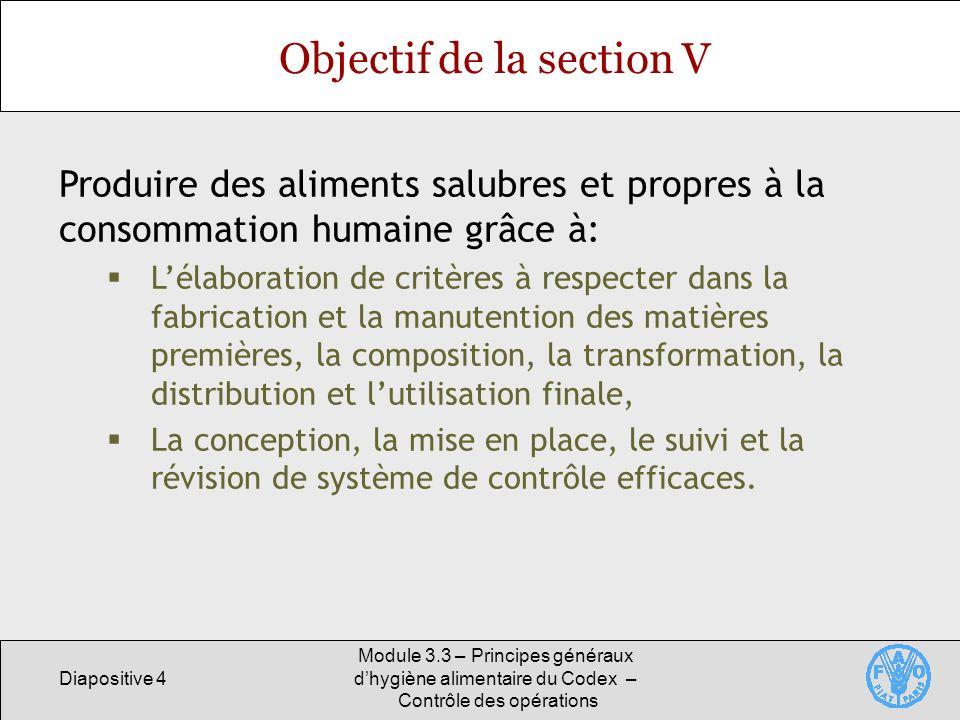Objectif de la section V