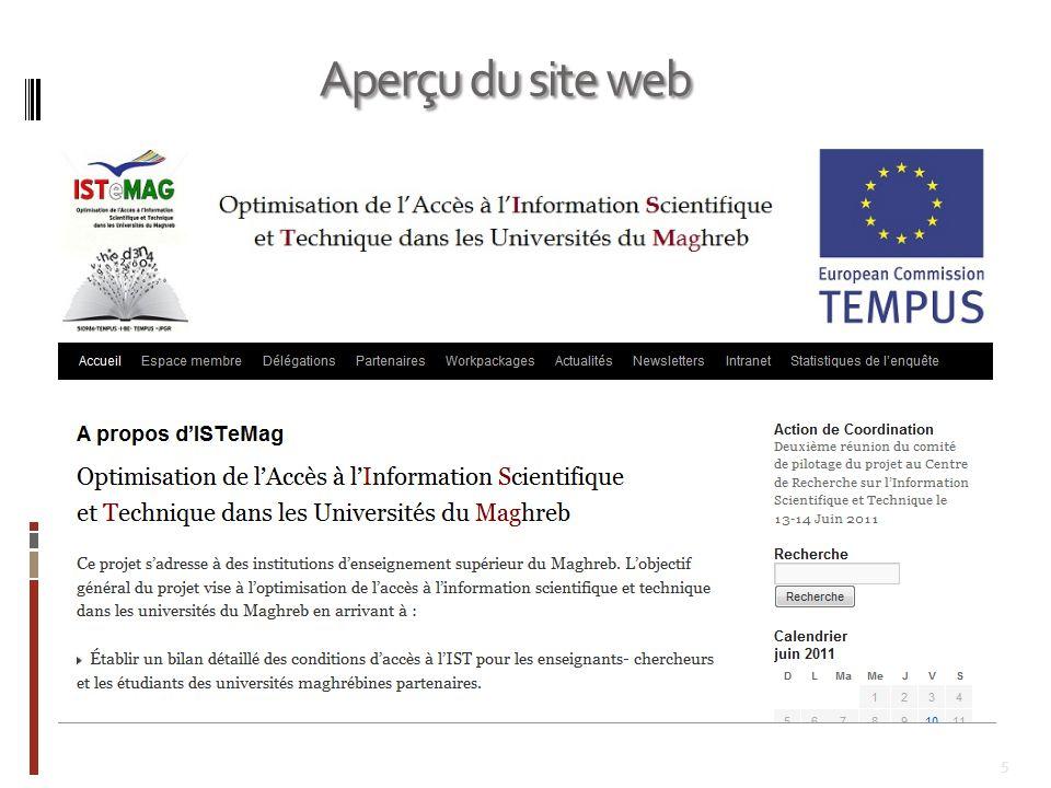 Aperçu du site web
