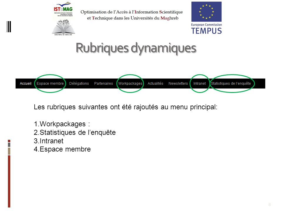 Rubriques dynamiques Les rubriques suivantes ont été rajoutés au menu principal: Workpackages : Statistiques de l'enquête.