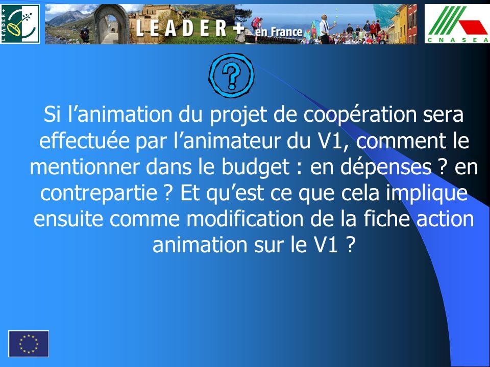 Si l'animation du projet de coopération sera effectuée par l'animateur du V1, comment le mentionner dans le budget : en dépenses .