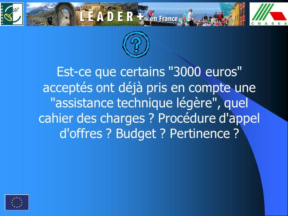 Est-ce que certains 3000 euros acceptés ont déjà pris en compte une assistance technique légère , quel cahier des charges .