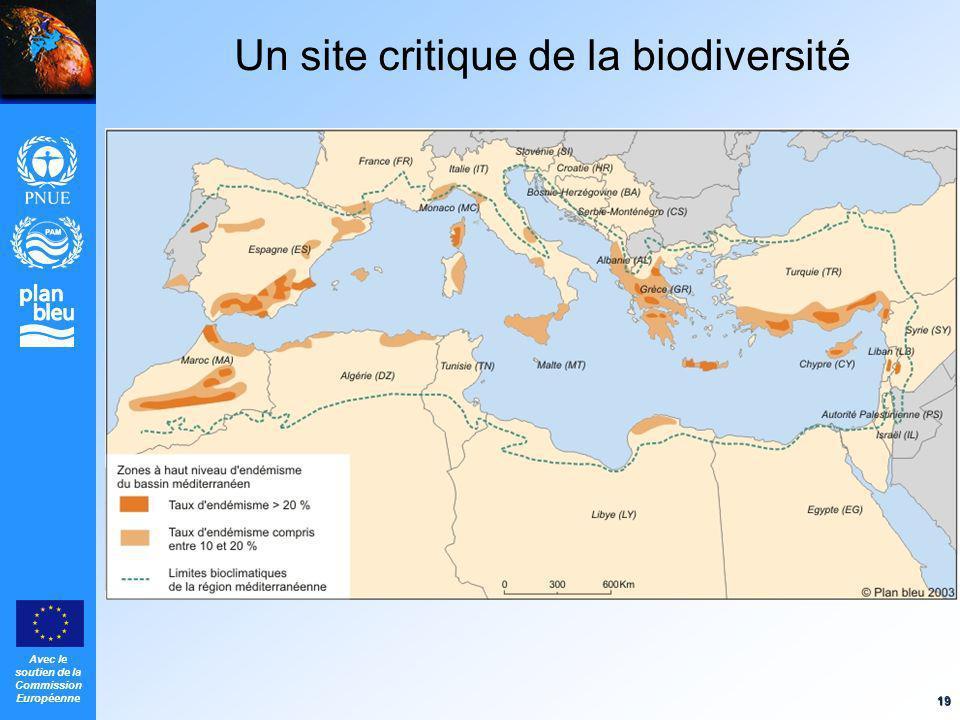 Un site critique de la biodiversité