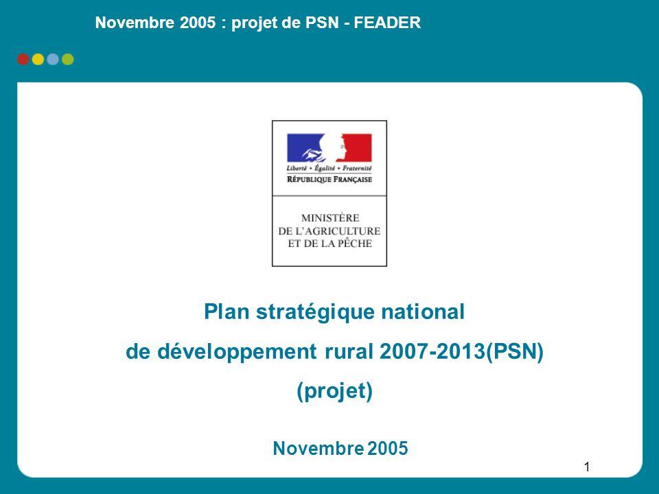 Plan stratégique national de développement rural 2007-2013(PSN)