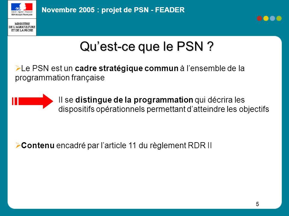 Qu'est-ce que le PSN Le PSN est un cadre stratégique commun à l'ensemble de la programmation française.