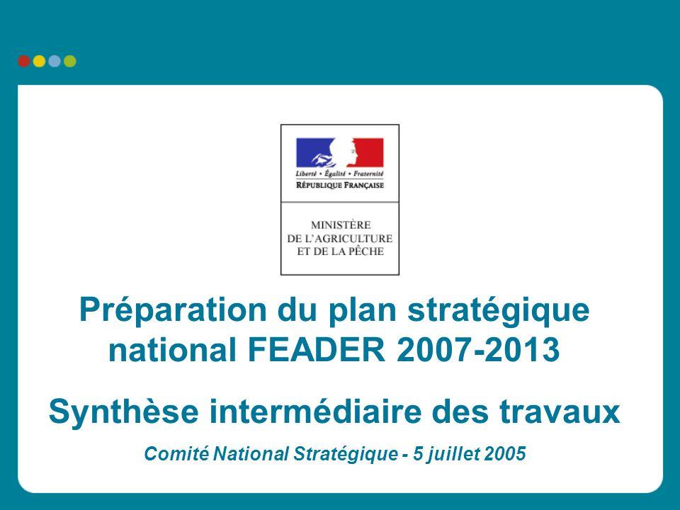 Préparation du plan stratégique national FEADER 2007-2013