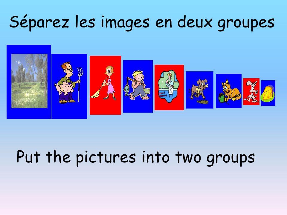 Séparez les images en deux groupes