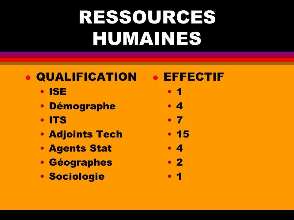 RESSOURCES HUMAINES QUALIFICATION EFFECTIF ISE Démographe ITS
