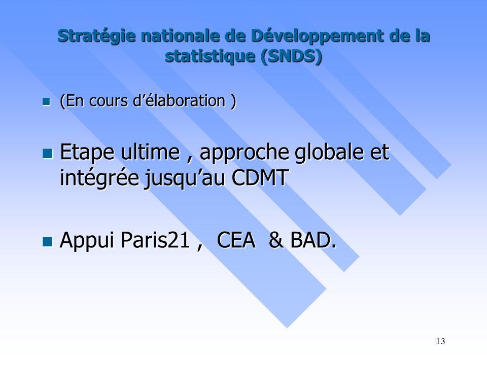 Stratégie nationale de Développement de la statistique (SNDS)