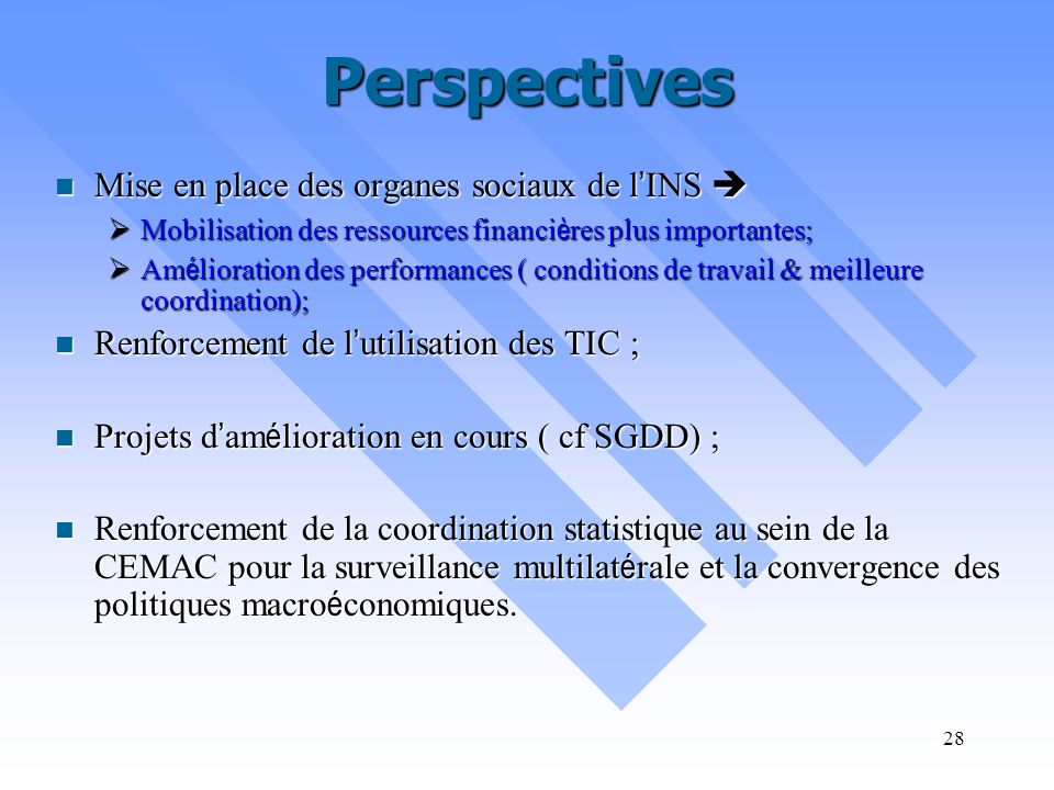Perspectives Mise en place des organes sociaux de l'INS 