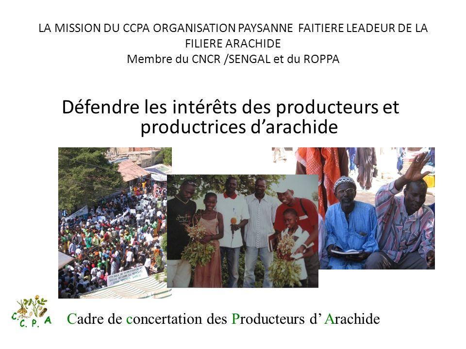 Défendre les intérêts des producteurs et productrices d'arachide