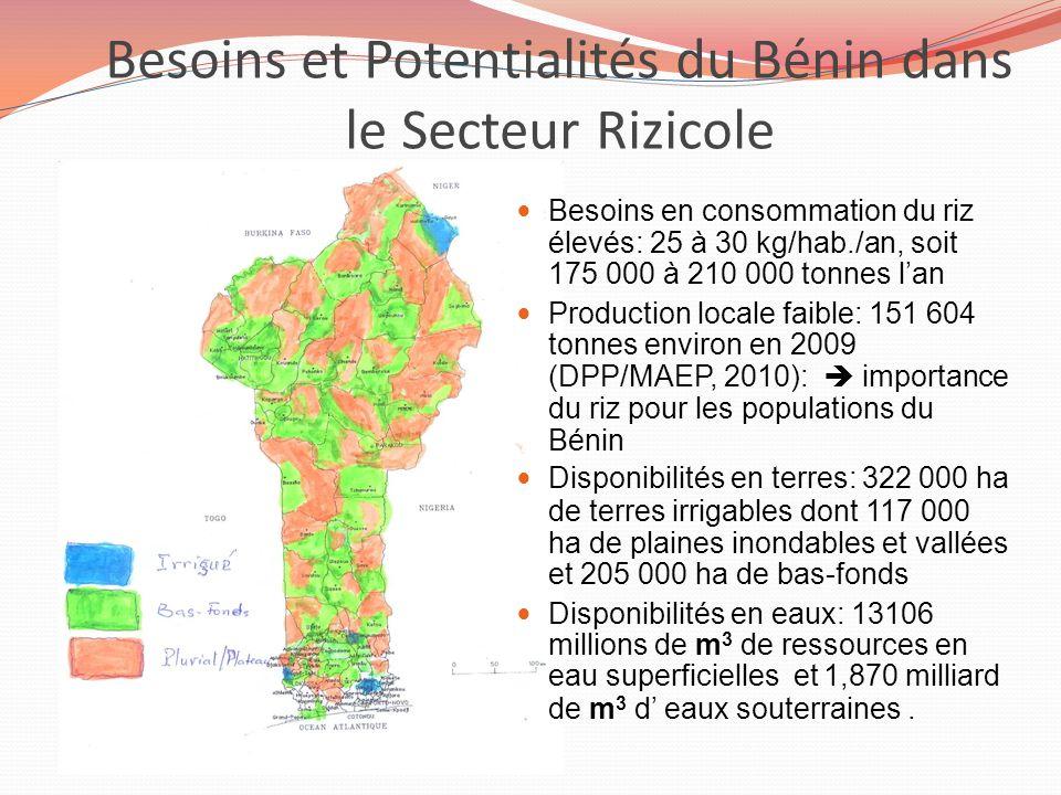 Besoins et Potentialités du Bénin dans le Secteur Rizicole