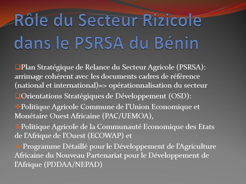 Rôle du Secteur Rizicole dans le PSRSA du Bénin