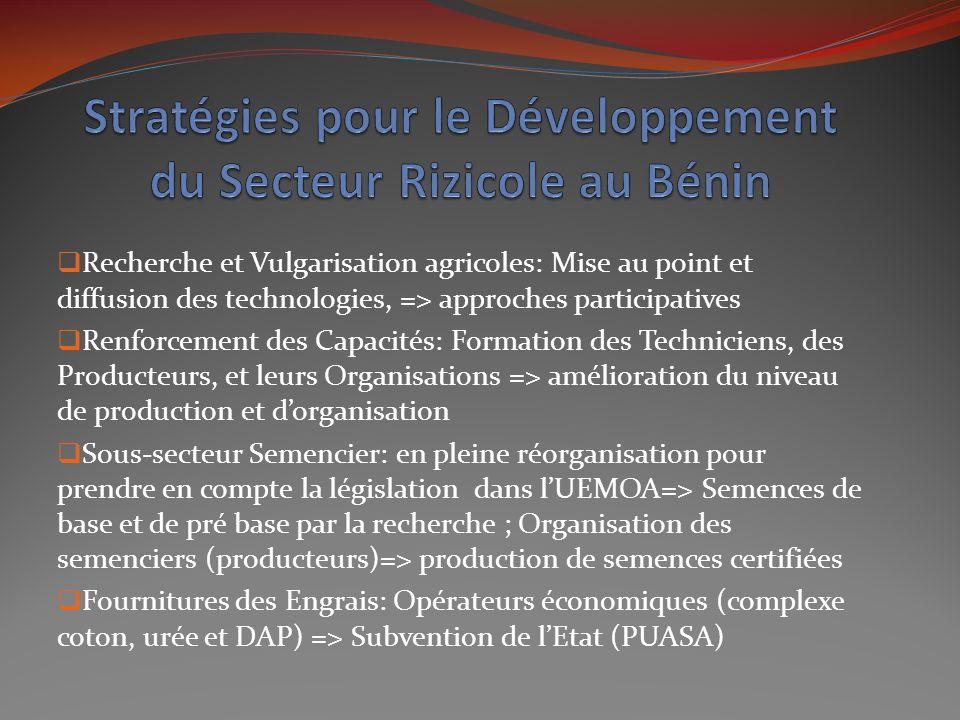 Stratégies pour le Développement du Secteur Rizicole au Bénin