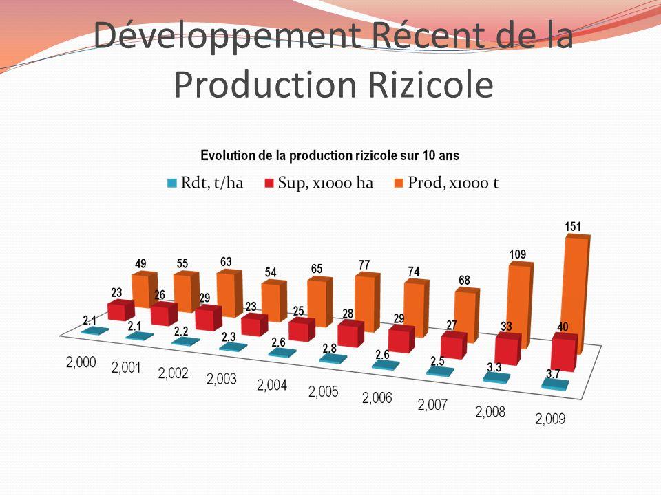 Développement Récent de la Production Rizicole