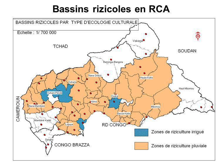 Bassins rizicoles en RCA