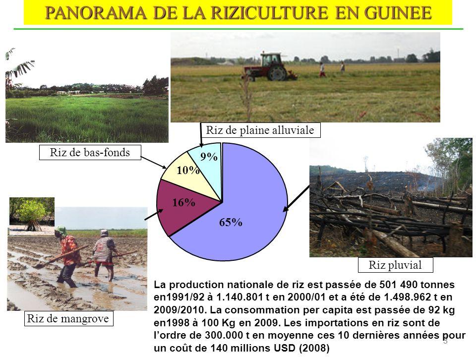 PANORAMA DE LA RIZICULTURE EN GUINEE