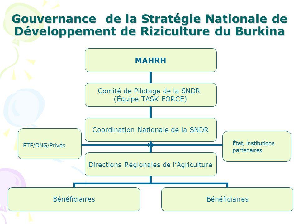Gouvernance de la Stratégie Nationale de Développement de Riziculture du Burkina