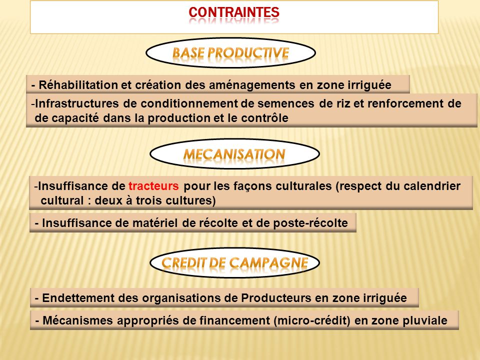 CONTRAINTES BASE PRODUCTIVE MECANISATION CREDIT DE CAMPAGNE