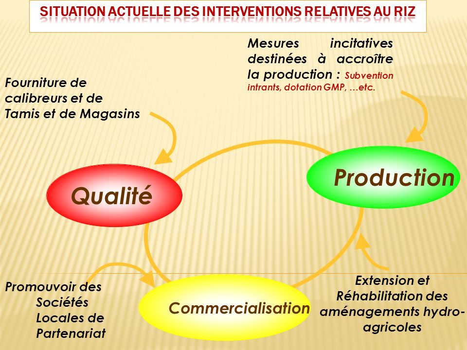 SITUATION ACTUELLE DES INTERVENTIONS RELATIVES AU RIZ