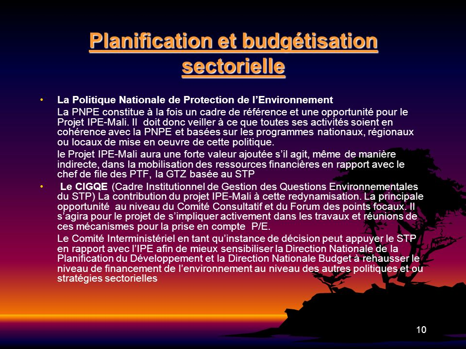 Planification et budgétisation sectorielle