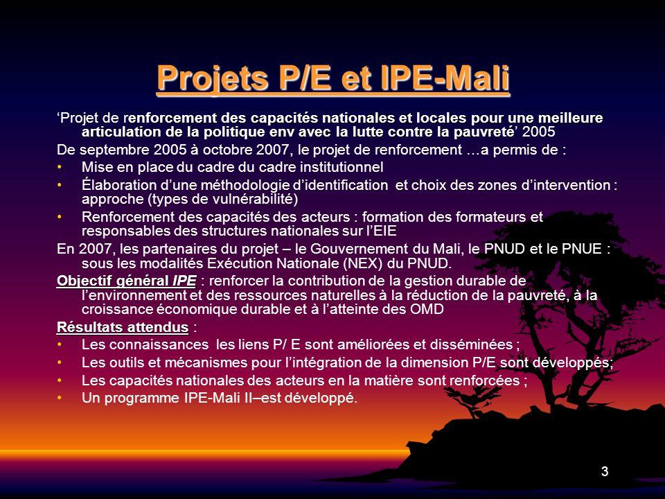 Projets P/E et IPE-Mali