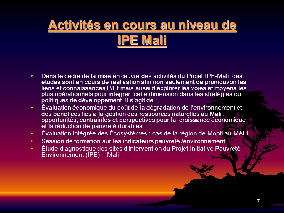 Activités en cours au niveau de IPE Mali