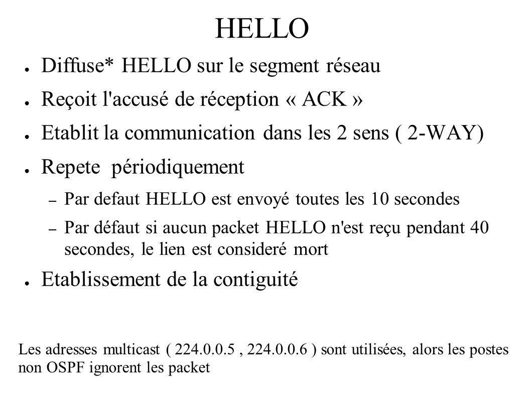 HELLO Diffuse* HELLO sur le segment réseau