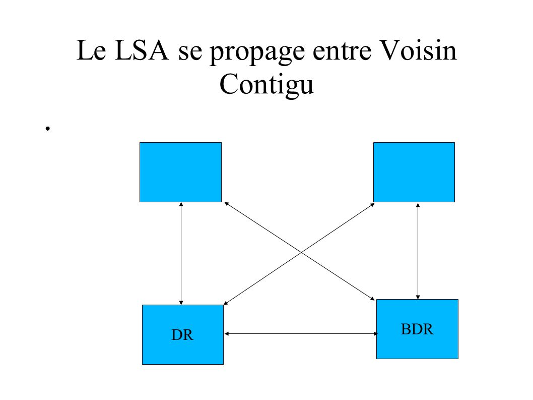 Le LSA se propage entre Voisin Contigu
