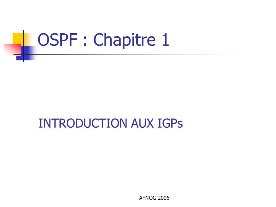 OSPF : Chapitre 1 INTRODUCTION AUX IGPs AFNOG 2006