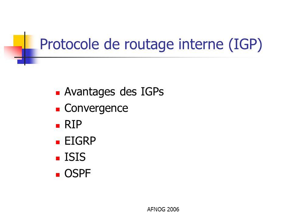 Protocole de routage interne (IGP)