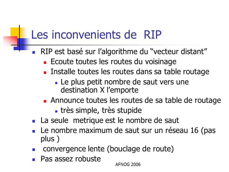 Les inconvenients de RIP