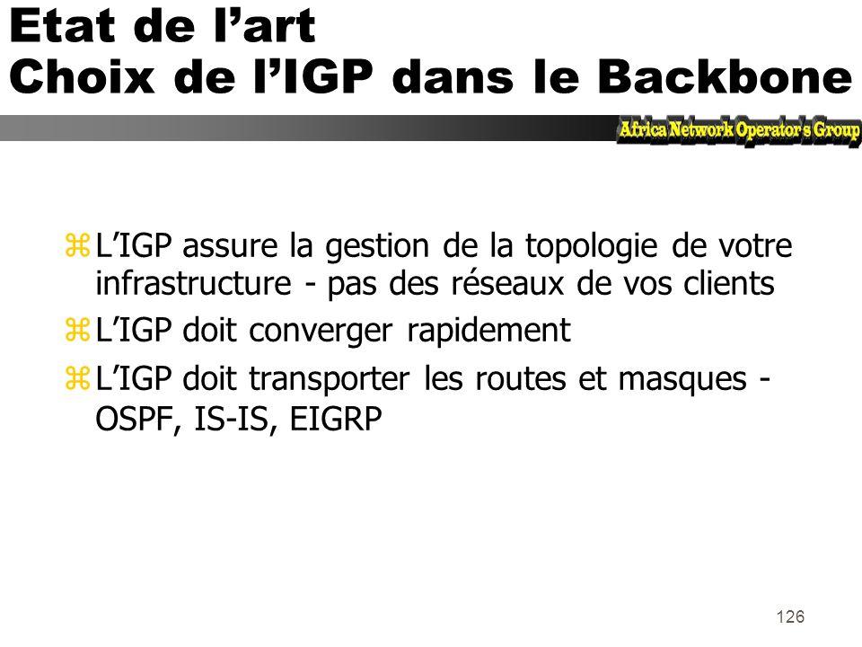 Etat de l'art Choix de l'IGP dans le Backbone