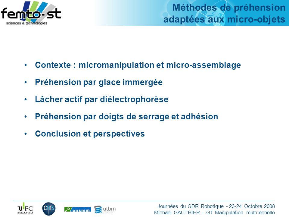Méthodes de préhension adaptées aux micro-objets