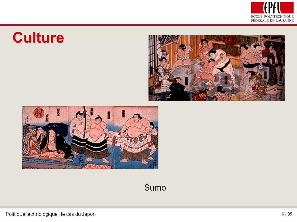Culture Sumo