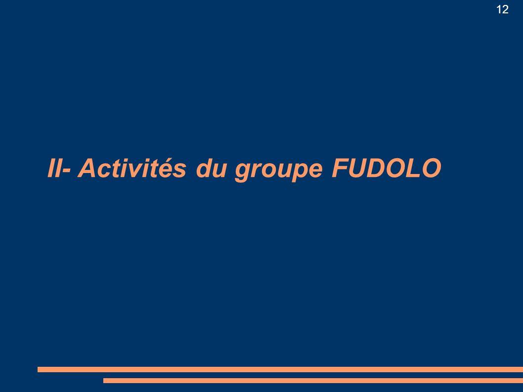 II- Activités du groupe FUDOLO
