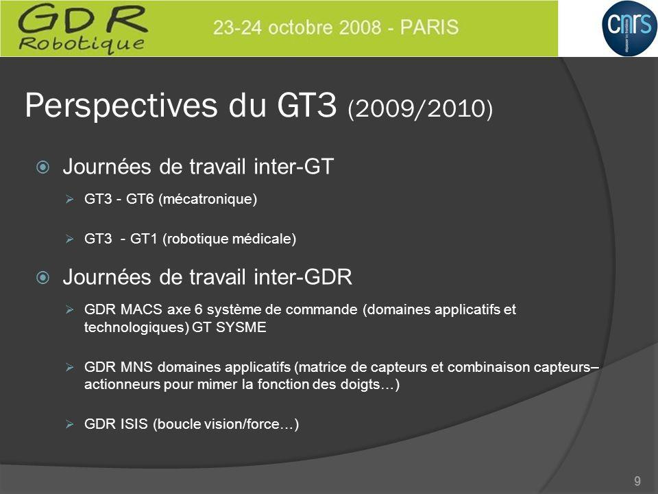 Perspectives du GT3 (2009/2010) Journées de travail inter-GT