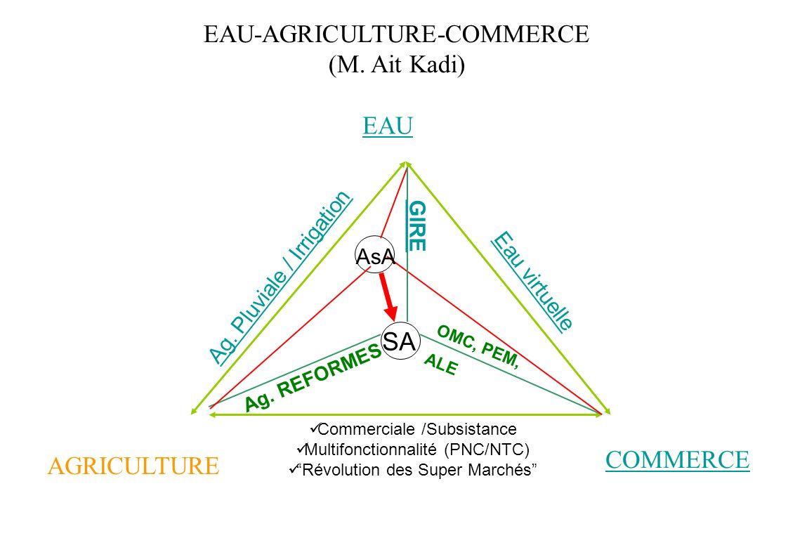 EAU-AGRICULTURE-COMMERCE (M. Ait Kadi)