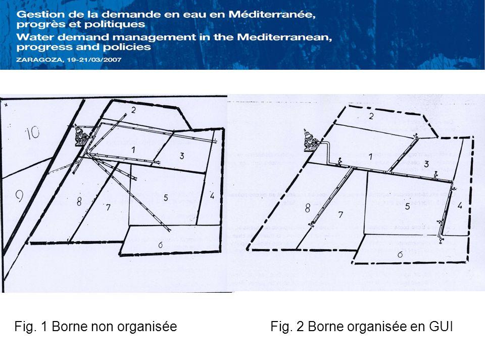 Fig. 1 Borne non organisée