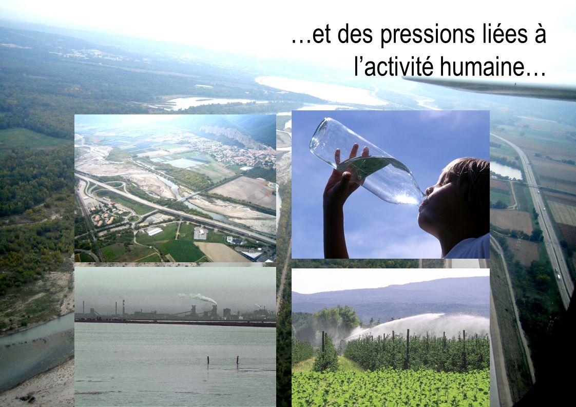 …et des pressions liées à l'activité humaine…
